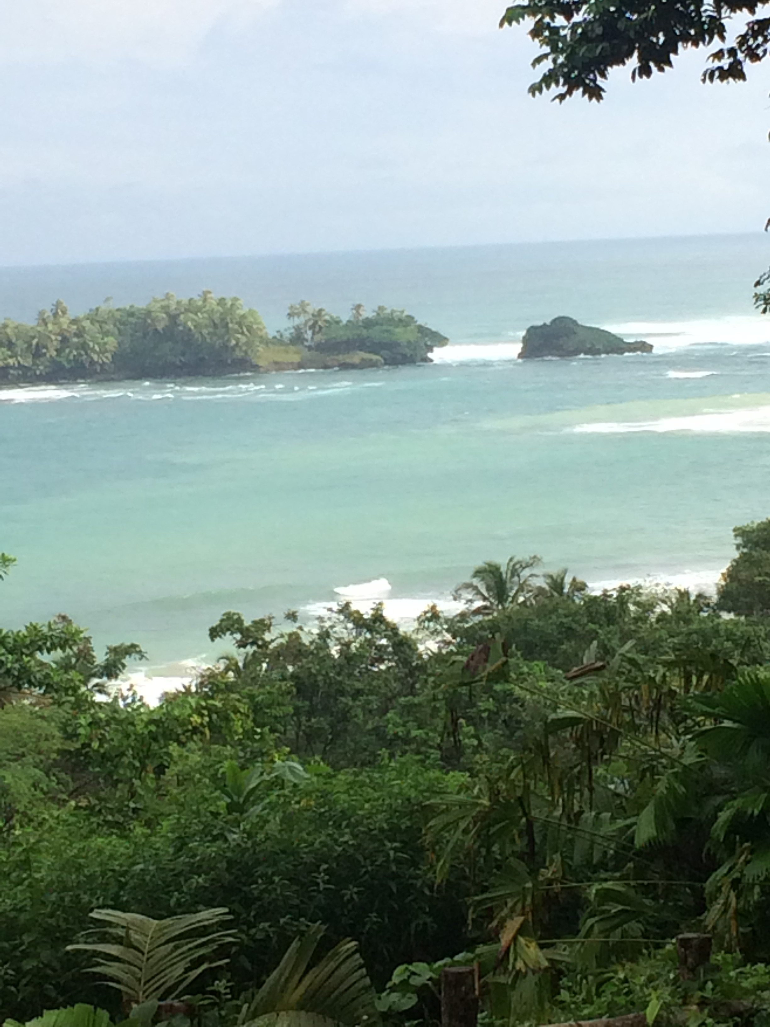 Red Frog Beach Resort review – Bocas Del Toro, Panama