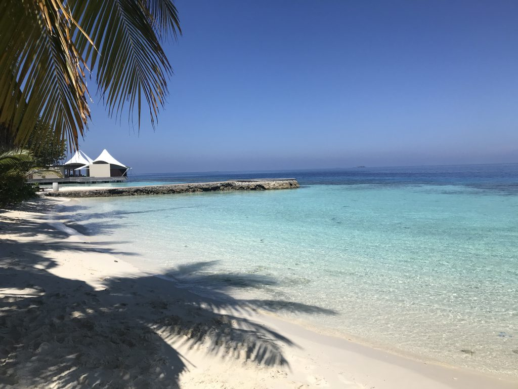 Maldives COVID 14 day